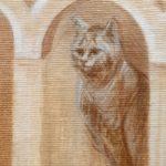 """знак на лобі кішки у вигляді літери """"М"""""""